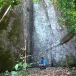 Uma trilha amazônica perto de Alter do Chão