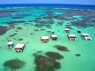 Dicas para mergulho em Maragogi, Alagoas