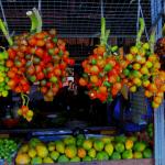 Mercado 25 de Setembro: as feiras em Belém do Pará