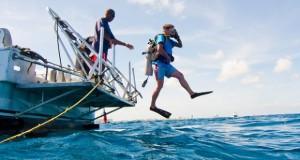 Mergulho em Aruba (http://www.flickr.com/photos/johnjoh/5648322933/)