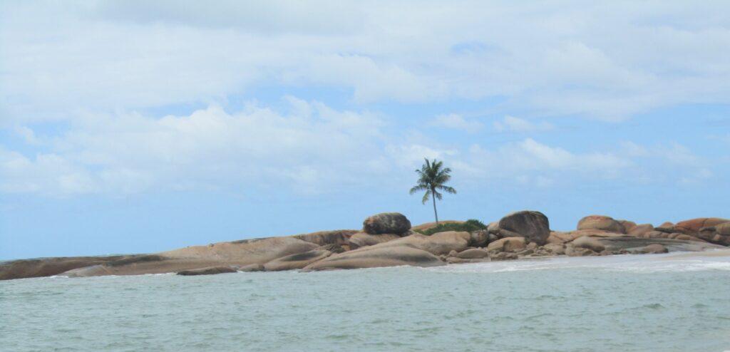 praia em tamandaré