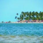 Comer bem na praia dos Carneiros, em Pernambuco