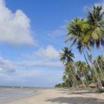Praia dos Carneiros, a descoberta de um paraíso