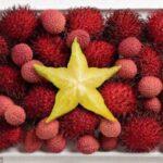 A lichia dá a cor vermelha à bandeira do Vietnã