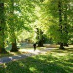 Viagens pela Europa: 5 dicas de passeios em Estocolmo, a capital Viking