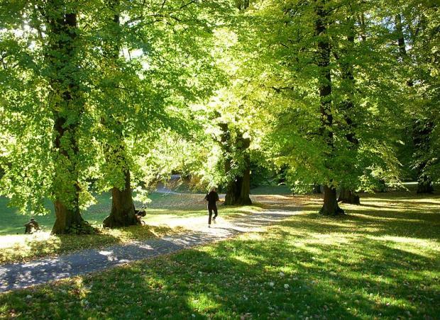 O Hagaparken é arborizado e tem pista para correr | foto - Holger.Ellgaard