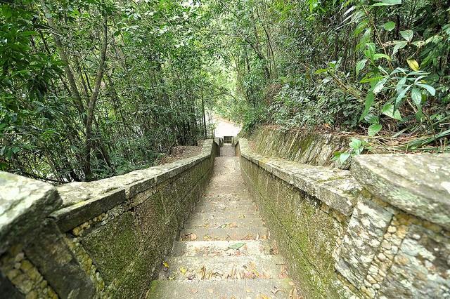 floresta-parque-tijuca-rio-de-janeiro
