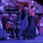 Show de Flamenco em Madrid