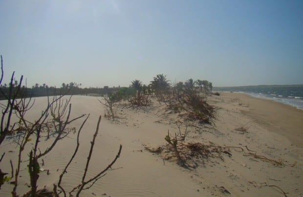 praia atins 23