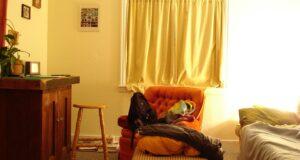 sofa5-nova-casa