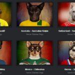 Veja as raças de cachorro de cada país com a camisa da seleção