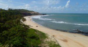 Caminhada pelas praias de Pipa: falésias, mata atlântica, golfinhos…