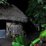 O dia em que tomei ayahuasca com um xamã na Amazônia