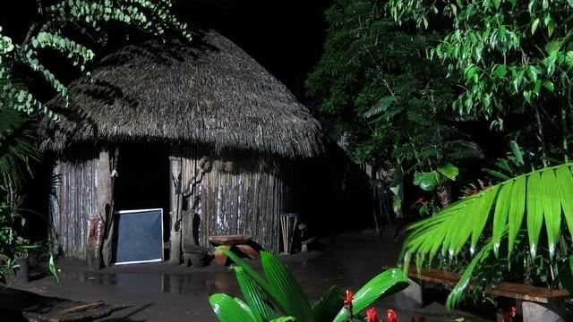 ayahuasca amazonia cha 5