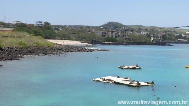 San Cristóbal é a ilha dos lobos-marinhos; eles sempre saem nas fotos