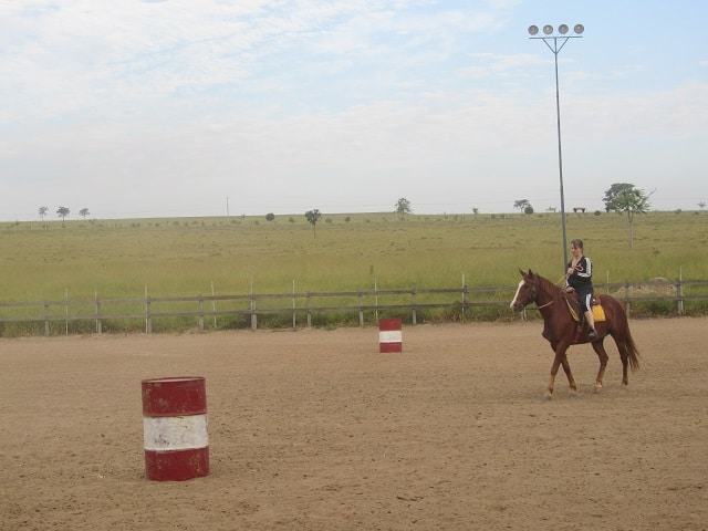 cavalo-itirapina