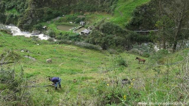 Ao redor da atração túristica, as pessoas levam a vida no campo