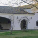 Visita vinícola Undurraga – Valle del Maipo, em Santiago, no Chile