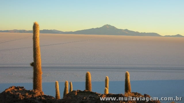 A Ilha de Cactus no meio do Salar normalmente não é acessível na temporada de chuvas