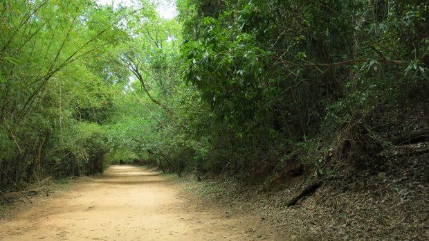 As trilhas de Sousas e Joquim Egídio enchem aos finais de semana