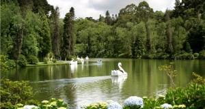 O Lago Negro de Gramado, um dos melhores destinos de inverno do Brasil - Divulgação