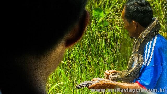 O ônibus parou para ver a cobra que o homem capturou a beira da estrada na Amazônia equatoriana