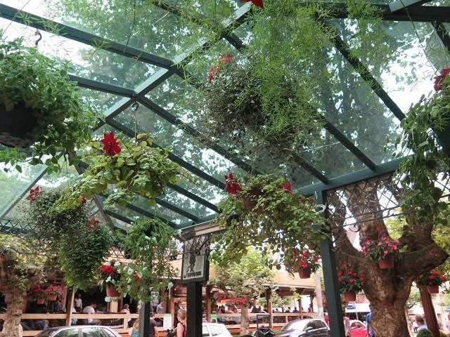 restaurante-safari-campos-do-jordao