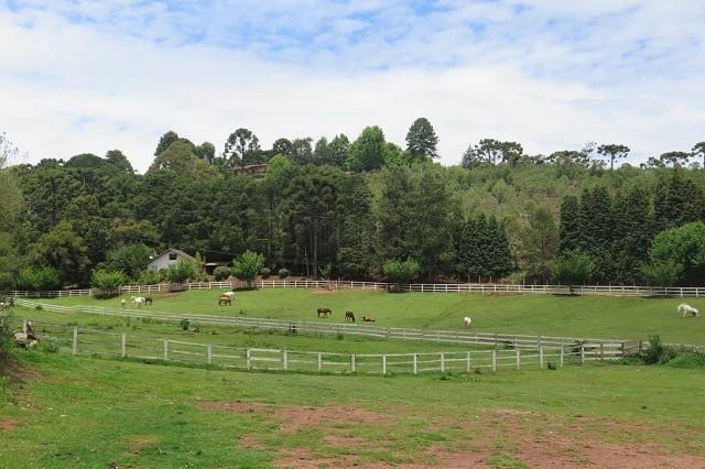 Fazenda interior de SP