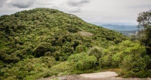 Quem está disposto a fazer trilhas em Monte Verde vai encontrar cenários únicos