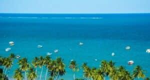 Na beirada da praia de Maragogi, coqueiros; no mar azul, barquinhos