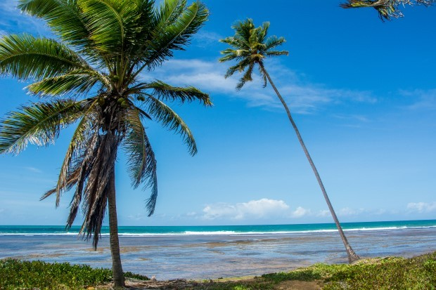 A praia do Forte fica a 55 km do aeroporto de Salvador, na Costa dos Coqueiros