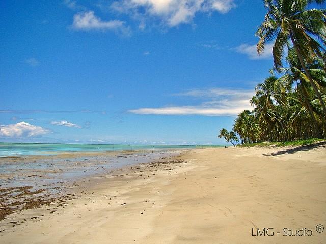 A conservada praia do Patacho está sempre nas listas de melhores praias do Brasil | foto - Leandro Macedo Gonçalves