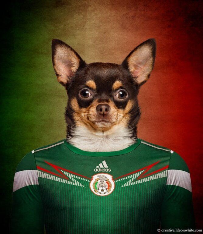 Chihuahua - México