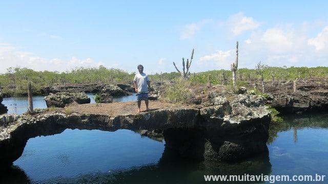 O tour até os tunneles, em Isabela, custa US$ 70 e reserva paisagens como esta da foto, além de encontros com pinguins, tubarões, tartarugas...