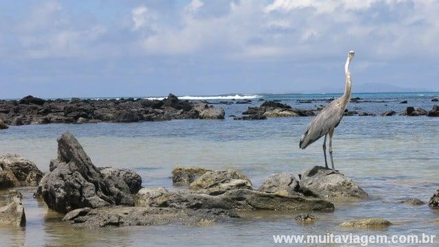 Uma linda praia no Equador no caminho até Las Grietas, mais um passeio grátis em Galápagos