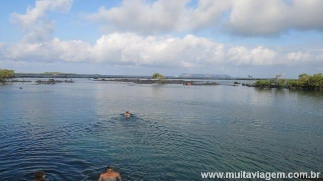 Concha y Perla é um lugar de fácil acesso e grátis para megulhar em Isabela, minha ilha preferida de Galápagos