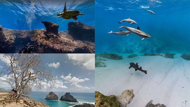Fotos bonitas de Fernando de Noronha no Google Maps