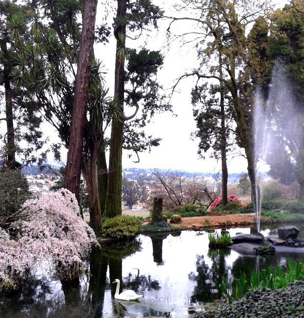 O belo jardim da produtora de vinho em Portugal