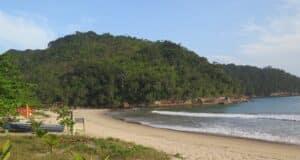 Camburi - Ubatuba