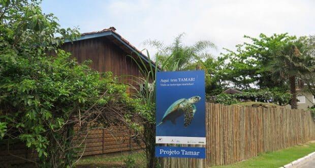 Projeto Tamar Ubatuba