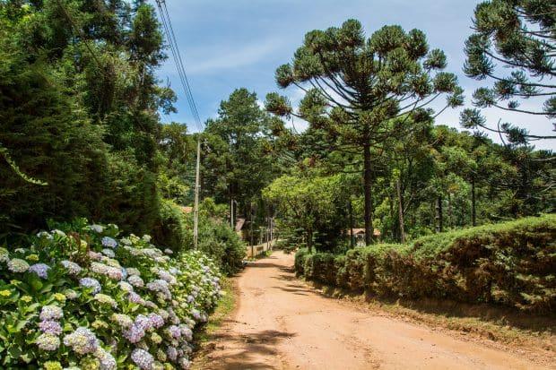 Uma das opções para fazer a viagem de lua de mel com pouco dinheiro no Brasil é Monte Verde, que também conta com resorts e spas para casais dispostos a ficar em lugares mais sofisticados