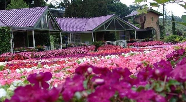 Hotel & Spa em Mairiporã tem piscinas e passeios a cavalo.