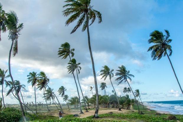 Um pequeno braço de dunas separa o mar das lagoas na vila hippie de Arembepe