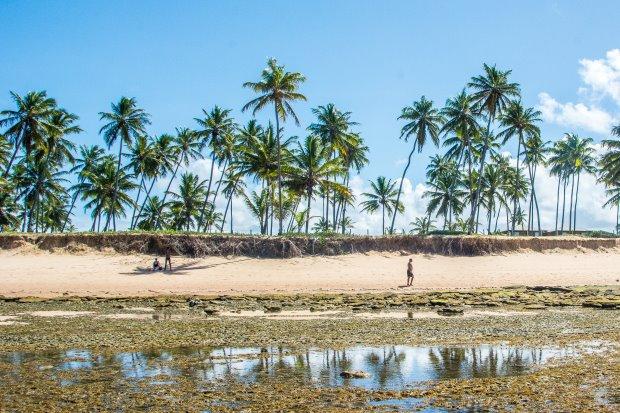 A praia do Forte é um dos melhores lugares para ficar no litoral norte da Bahia