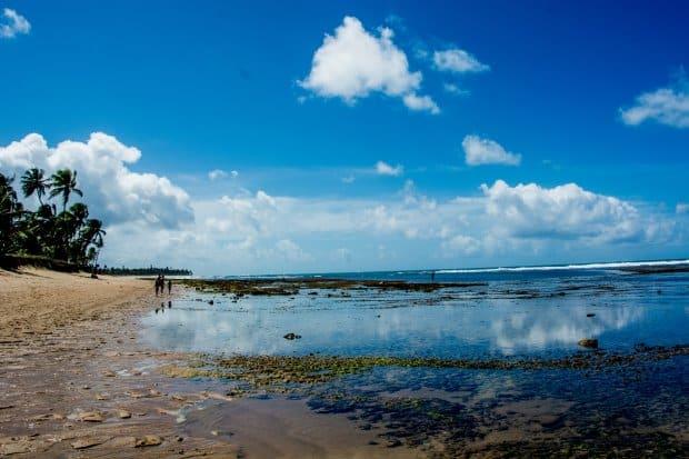 A praia do Forte, no litoral norte da Bahia, tem muitas coisas para ver, como o projeto Tamar