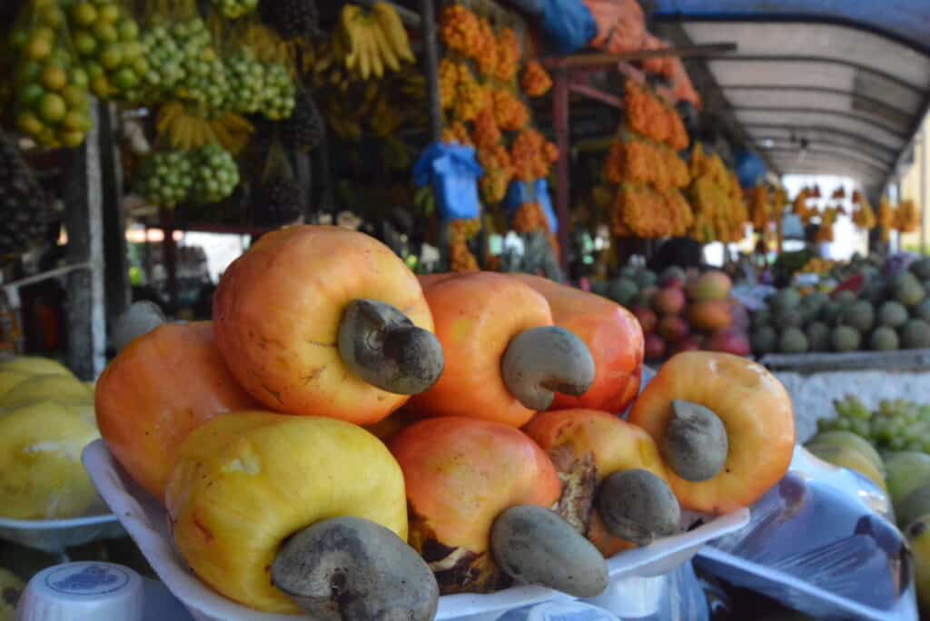 O que fazer em Natal: visitar feiras de frutas locais