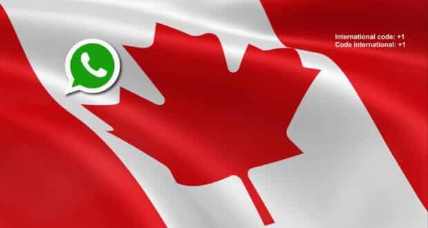 Como adicionar número no WhatsApp de amigos no Canadá? - Muita Viagem